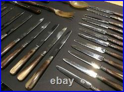 Antique French cutlery 29 piece Set Aux 2 Lions in case